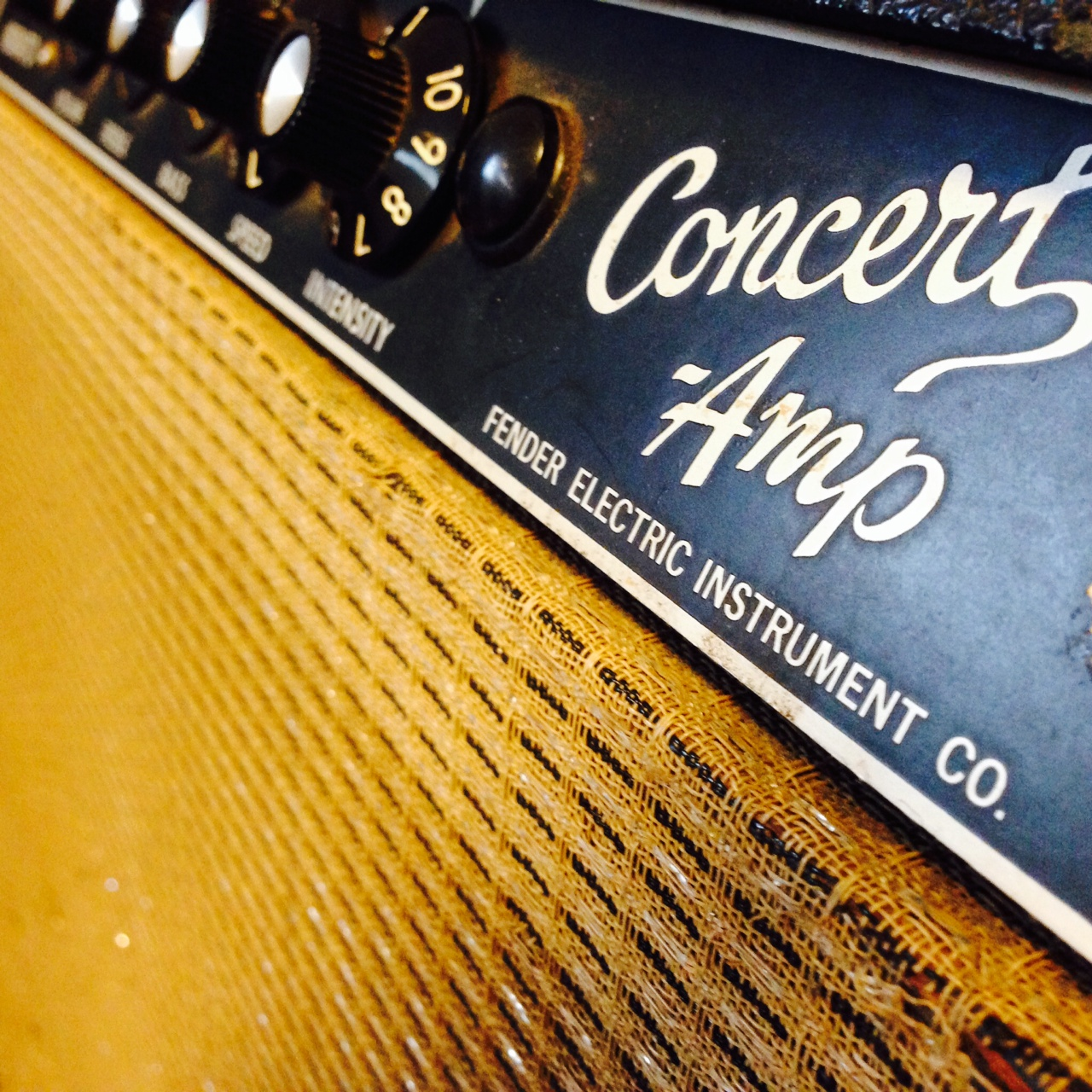 "A very nice 1965 Blackface Fender Concert 4x10"" amp. Soft and smooth sound"