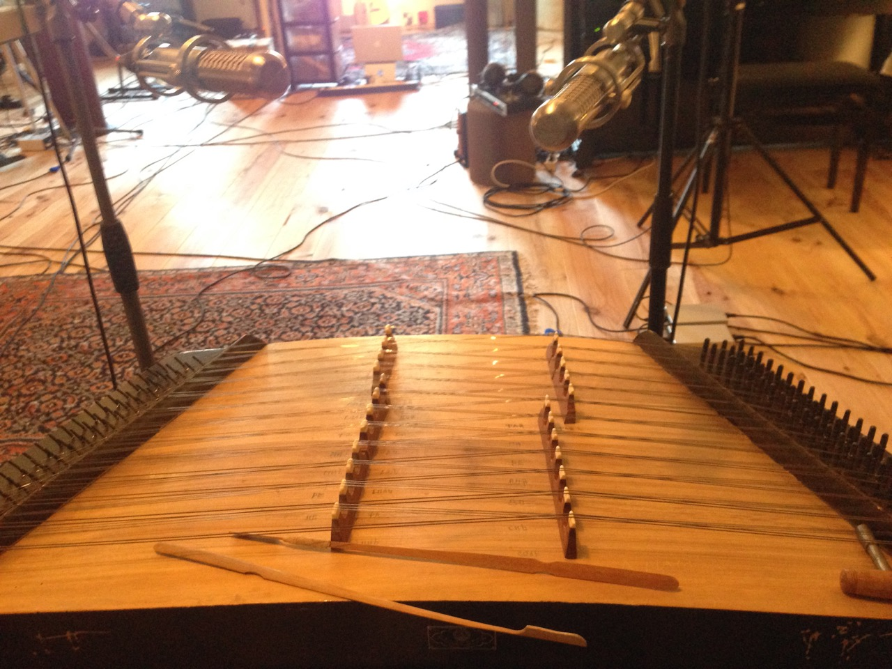 Persian Hammered Dulcimer. Great instrument for atmospheric sounds as well as a new flavor arrangements.